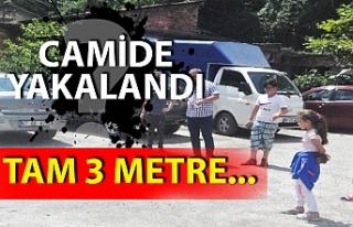 Zonguldak'ta 3 metre uzunluğundaki yılan korkuttu