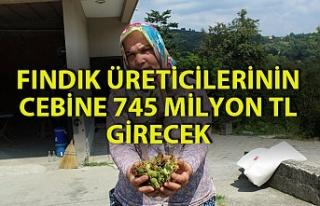 21 bin fındık üreticisinin 745 milyon TL kazanması...
