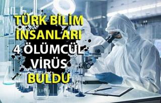 Türk bilim insanları 4 ölümcül virüs buldu!...
