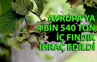 Avrupa'ya 4 bin 540 ton iç fındık ihraç edildi