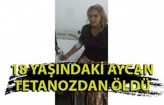 Fındık işçiliği için Zonguldak'taydı;...