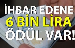 İhbar edene 6 bin lira ödül var!