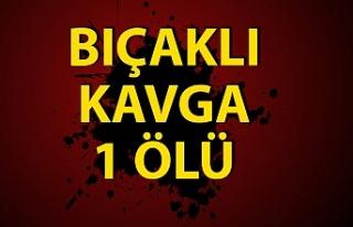 Zonguldak'ta bıçaklı kavga sonucu bir kişi...