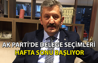 Ak Parti'de Delege Seçimleri Hafta Sonu Başlıyor