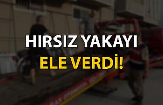 HIRSIZ YAKAYI ELE VERDİ!