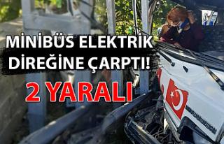 Minibüs elektrik direğine çarptı: 2 yaralı...