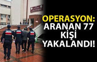 Operasyon: Aranan 77 kişi yakalandı!