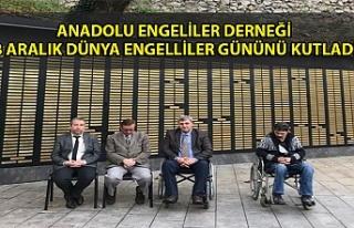 ANADOLU ENGELİLER DERNEĞİ 3 ARALIK DÜNYA ENGELLİLER...