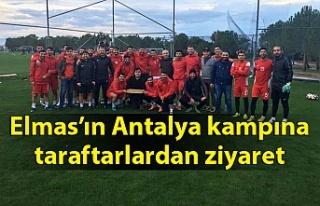 Elmas Antalya kampında