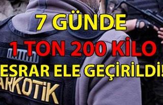 Narkotik Daire Başkanlığı 7 günde 1 ton 200 kilo...