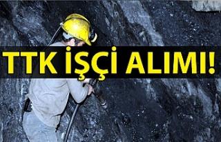 Türkiye Taş Kömürü Kurumu Personel Alımı! TTK...