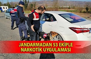 Jandarmadan 53 ekiple narkotik uygulaması