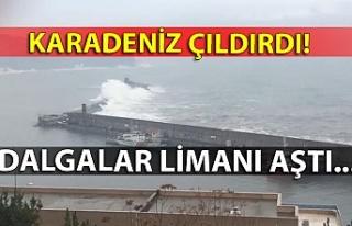 Karadeniz çıldırdı... Dalgalar limanı aştı