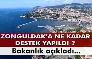 Zonguldak'a ne kadar destek yapıldı? Bakanlık...
