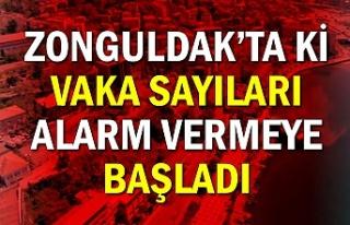 Zonguldak'ta ki vaka sayıları alarm vermeye başladı
