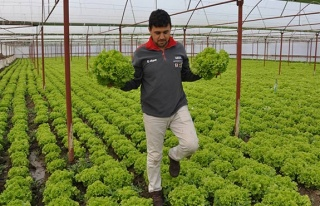 Mevsimlik işçilerin günlük ücreti açıklandı...