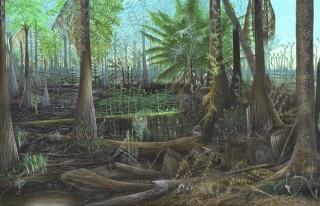 150 milyon yıl önce Zonguldak...