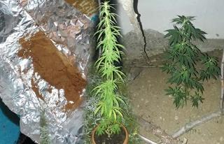 Jandarma, uyuşturucuya geçit vermedi