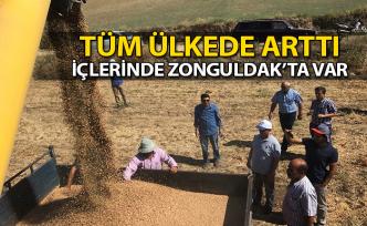 Tüm ülkede arttı, İçlerinde Zonguldak'ta var