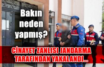 Cinayet zanlısı Jandarma tarafından yakalandı... Bakın neden yapmış?