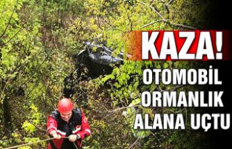 Kaza: Otomobil ormanlık alana uçtu