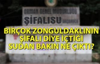 Birçok Zonguldaklının şifalı diye içtiği sudan bakın ne çıktı?