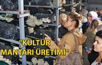 """""""Kültür Mantarı Üretimi"""""""