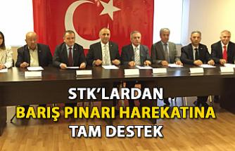 STK'lardan Barış Pınarı Harekatına tam destek