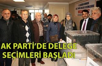 AK Parti'de delege seçimleri başladı