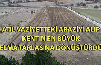 Atıl vaziyetteki araziyi alıp kentin en büyük elma tarlasına dönüştürdü