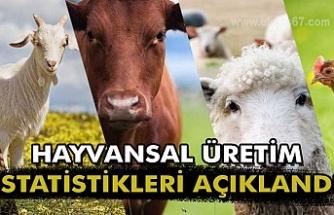 Hayvansal Üretim İstatistikleri açıklandı