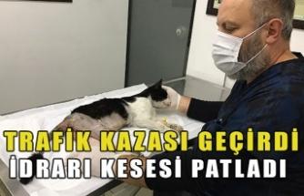 TRAFİK KAZASI GEÇİRDİ İDRARI KESESİ PATLADI