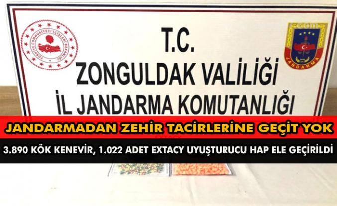 Jandarmadan zehir tacirlerine geçit yok  3.890 Kök Kenevir, 1.022 adet Extacy uyuşturucu hap ele geçirildi